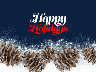 Holiday Card pine cone christmas snow card design adobe fresco painting digital painting holiday