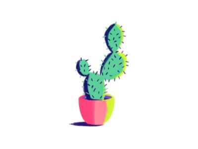 Cactus Digital Painting