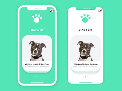 Furry Friend World App Ui minimal flat app vector concept illustration ux ui