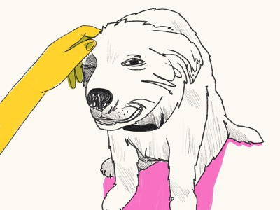 Thanks Dogs thankyou thanks portrait dogs animals drawing illustration digital illustration
