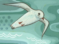 tiny seagull painting