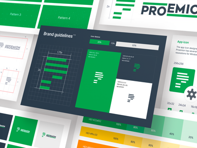 Proemion Visual Identity style guides style guide visual identity user interface design icons typography vector ui branding logo ramotion