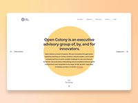 OpenColony Marketing Website page particle animation fluid illustration user interface user experience real homepage webpage landing website web interface ui design ramotion