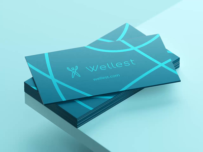 Wellest – Brand Identity Assets