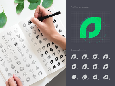 Assetly Logo Sketches grid logo grid layout nature logo logo mark leaf logotype visual identity branding process design process logo process brand identity design logo sketches icons icon logo ramotion design branding design logo design branding