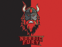 Nordic Fury Illustration