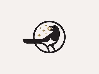 Magpie gold bird thief magpie