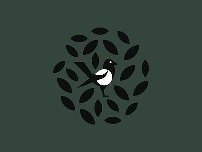 Magpie plant flora bird magpie