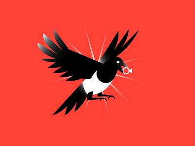 Magpie brilliant bird thief magpie