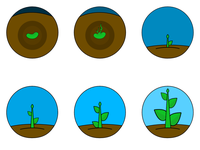 Plant Growth Icons
