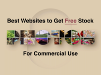 8 Best Websites to Get Free Stock Photos for Commercial Use