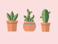 Flat Design Potted Cacti