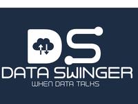 DATA SWINGER-Logo Design