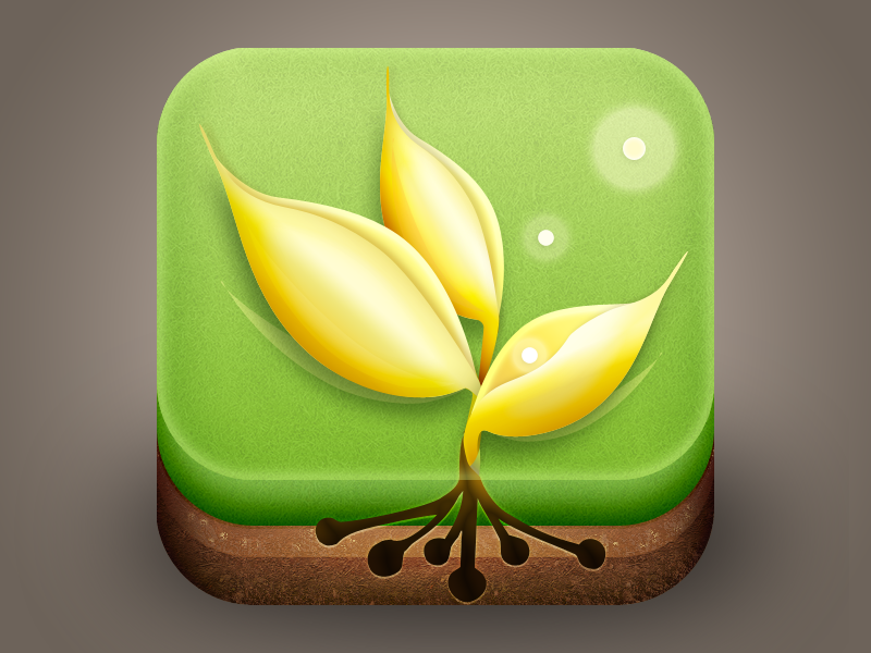 wheat knowledge icon icon app ui wheat knowledge phoebe grass earth iphone ios plant