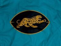 Jacksonville Jaguars 1950s