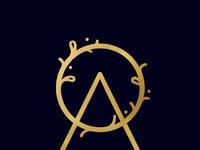 O a logo navy