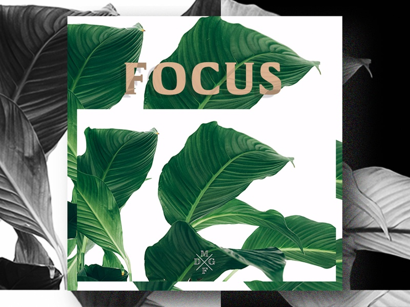 Focused green minimalism design focus