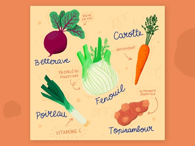 FEBUARY: Seasonal produce guide 2/4 artwork callendar healty eat veggie vegetable digital painting digital art food food illustration illustration