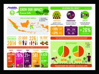 Cocoa Life Infographic