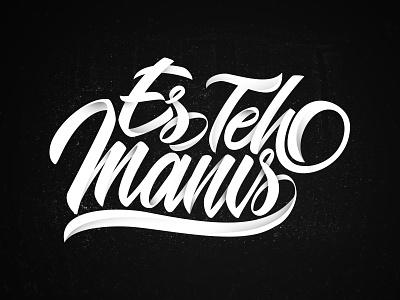 Es Teh Manis logo design branding font graffiti typeface brush calligraphy logotype handwritten handwriting script type illustration hand lettering calligraphy typography lettering