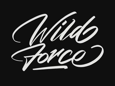 Wild Force font logo brush calligraphy branding typeface design handwriting logotype hand lettering type script calligraphy typography lettering