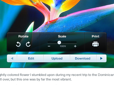 Image Hover Controls image photo controls edit settings popup popover hover icon button nav slider print rotate scale