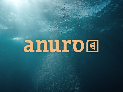 ANURO Limitless Gear. Mobility for Everyone disabled accesible branding brand design logo