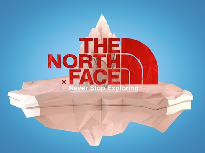 The North Face Poly 3D