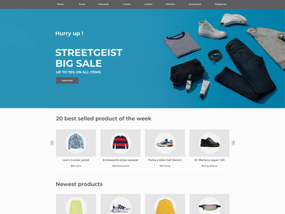 E-commerce website Store Homepage