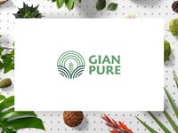 Gian Pure