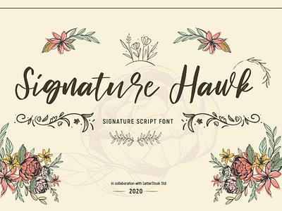 Signature hawk [Script Font] illustration lettering logo font fonts collection font bundle font fonts typeface typography font design