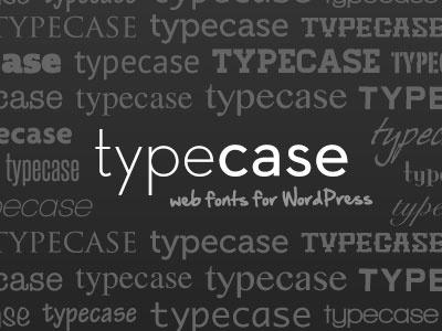 Beta Release typography wordpress web fonts typecase