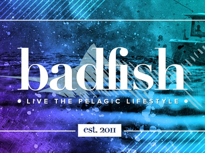 Badfish Co. Gradient/Overlay Treatment