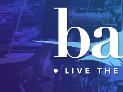 Badfish Co. Identity Teaser