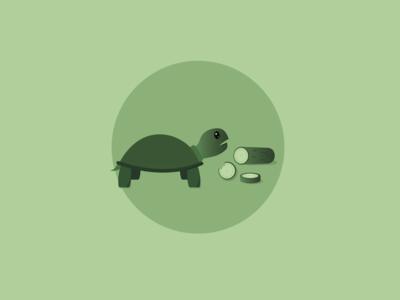 A Tortoise Named Bowser