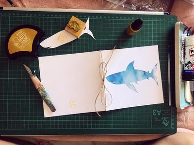 Shark 🦈