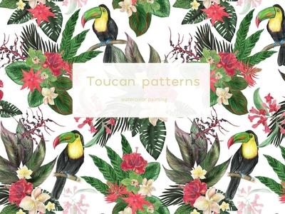 Watercolor toucan patterns