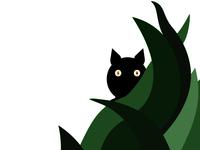 black cat 1037