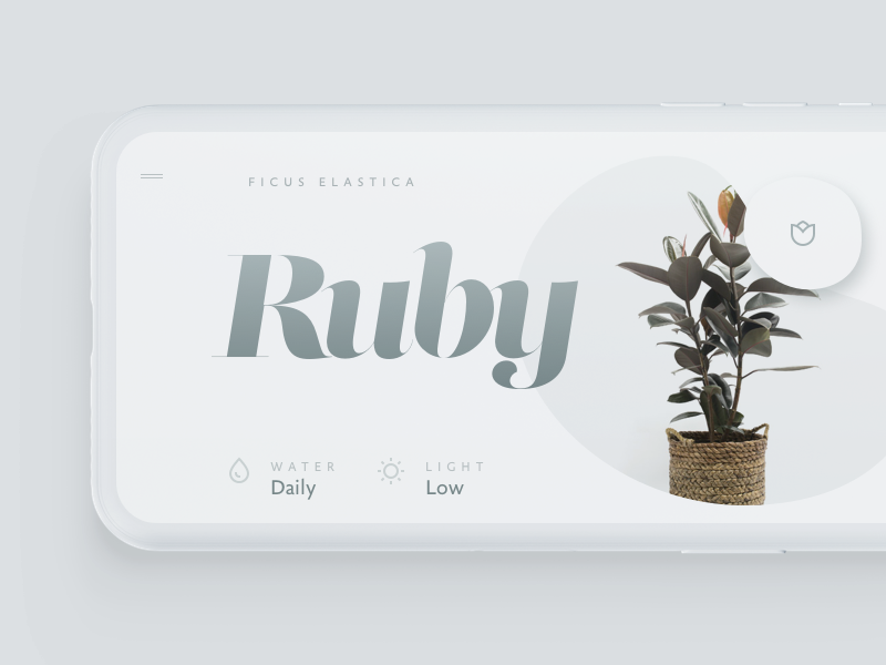 Flowers type visual interface touch ui minimal typography simple light mobile app flowers