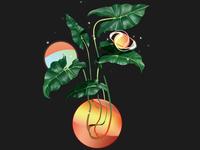 Plant Planet