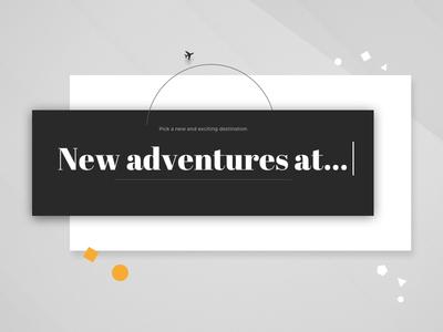 Airline Website Concept