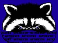 66Thieves Raccoon Bandit illustration