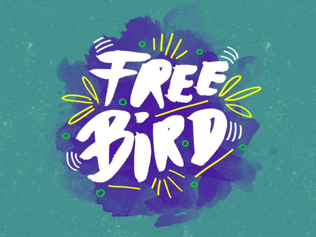 Free bird music art drawing design creative graphicdesign graphicdesigner handtype texture artwork illustration typography design type design type