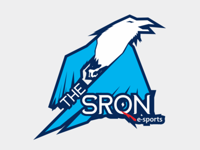 The Sron Esport
