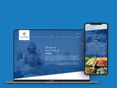 Website for Spirit Producer typography logo branding ui flat material design material ui design flat ui danemark ice blue mobile-first responcive photo album acohol stylish web design web photo