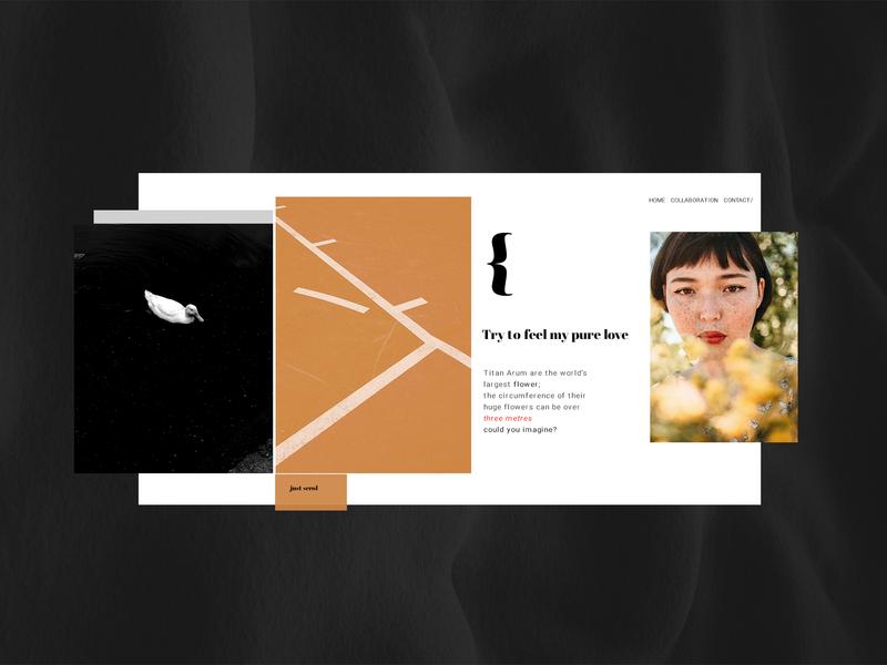Tkapa web minimalism hello dribbble clean firstshot