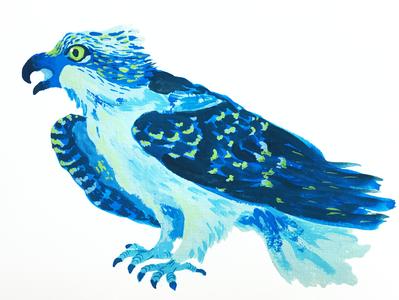 Actual Seahawk pacific northwest washington seattle raptor bird gouache painting football seahawks