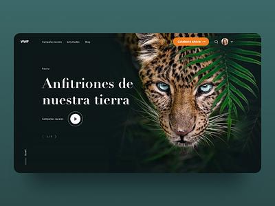 Cuidar nuestro planeta - Web Concept hero video slider planet felino jaguar web wild ux ui design diseño animal