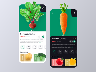 E-commerce project-day/night food health shopping vegetables vector design 图标 卷筒纸 设计 插图 ui