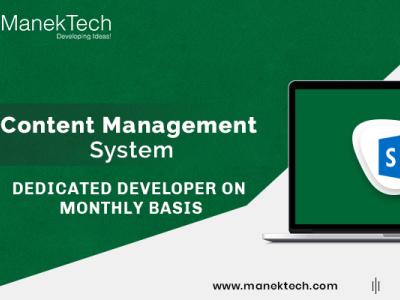 Custom CMS Web Development Company   CMS Development Services  